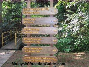 Bukit Nanas Trails