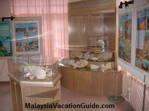 Cherating Turtle Sanctuary Exhibits