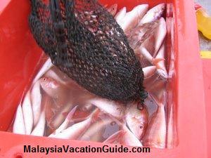 Beserah Fish