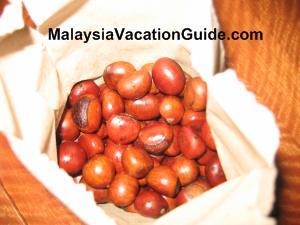 Chestnut At Gohtong Jaya