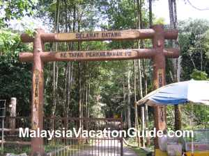 Sungai Tua Recreational Forest