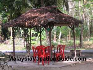 Sitiawan Seafood Under The Trees