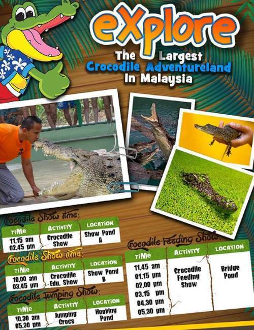 Activities schedule at Langkawi Crocodile Farm