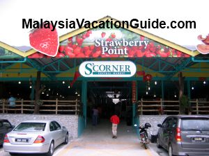 S Corner Cameron Highlands