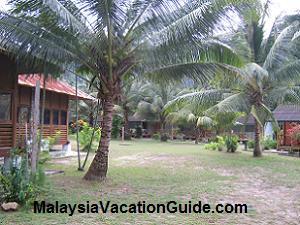 Tinggi Island Resort Pulau Tinggi