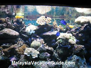 Langkawi Underwater World