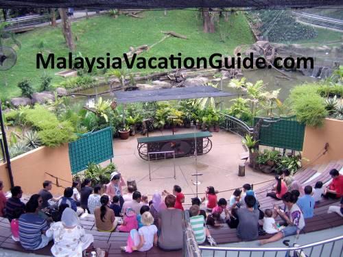 Kuala Lumpur Bird Park Amphitheater Show