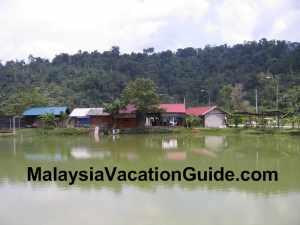 Danau Serendah Pond