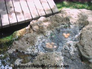 Sungai Klah Hot Spring