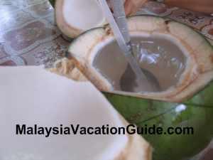Coconut Sitiawan