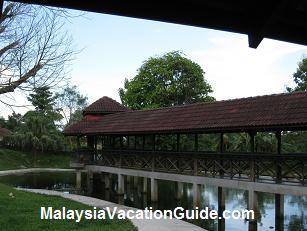 The Bridge Pond Langkawi Crocodile Farm
