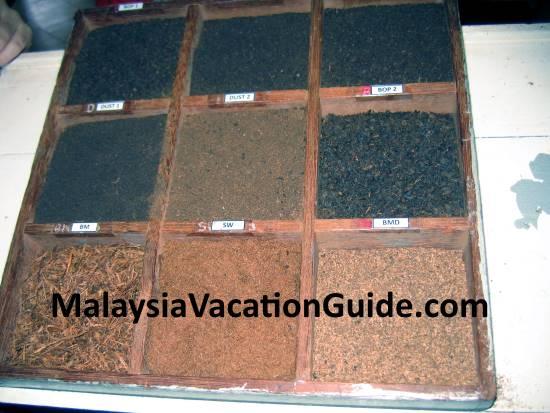 Processed tea leaves