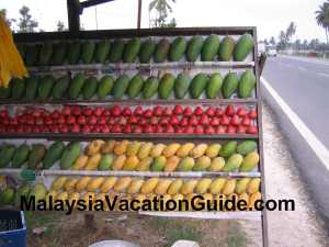Mangoes, corn and other fruits in Sekinchan